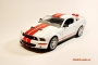 Shelby GT500 2007�.(����� � �������)1/24